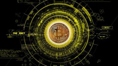 Starten-Sie-eine-Krypto-Börse-in-30-Tagen