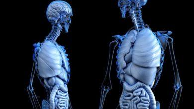 Künstliche Intelligenz (KI) für soziale Zwecke und Gesundheit